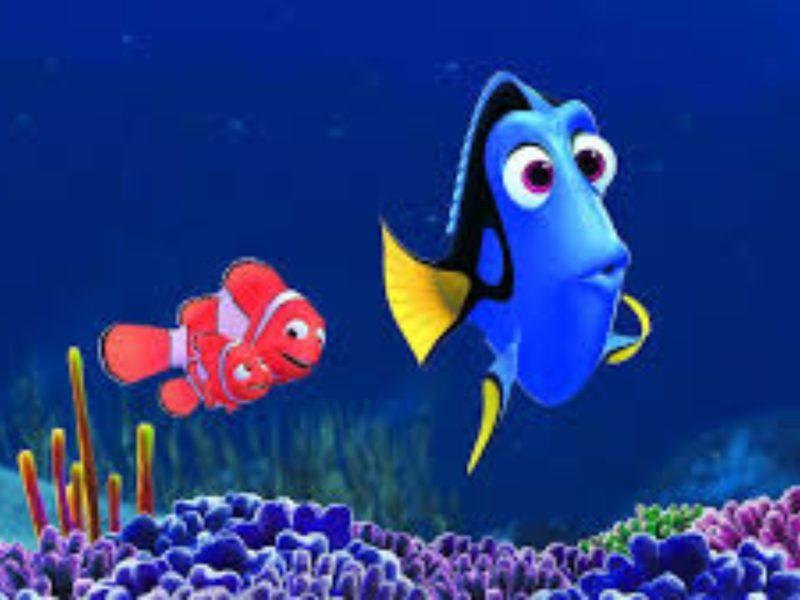 2015 Finding Dory Movie 4k