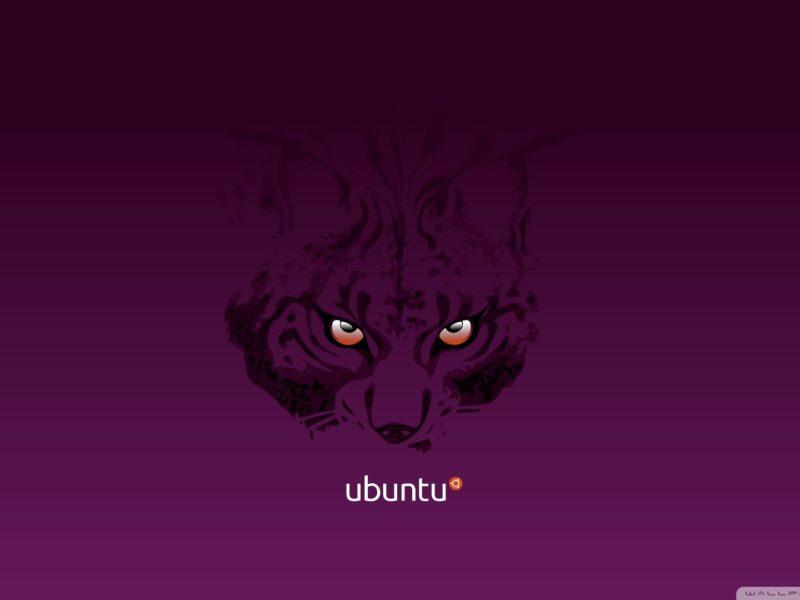 320×240 Ubuntu