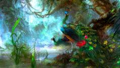 Animals Birds14