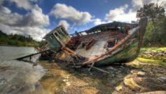 Boats 51