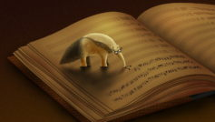 Funny Wallpapers Anteater Eats Notes 097651