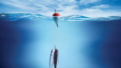 Funny Wallpapers Three Fish On The Hook 093344