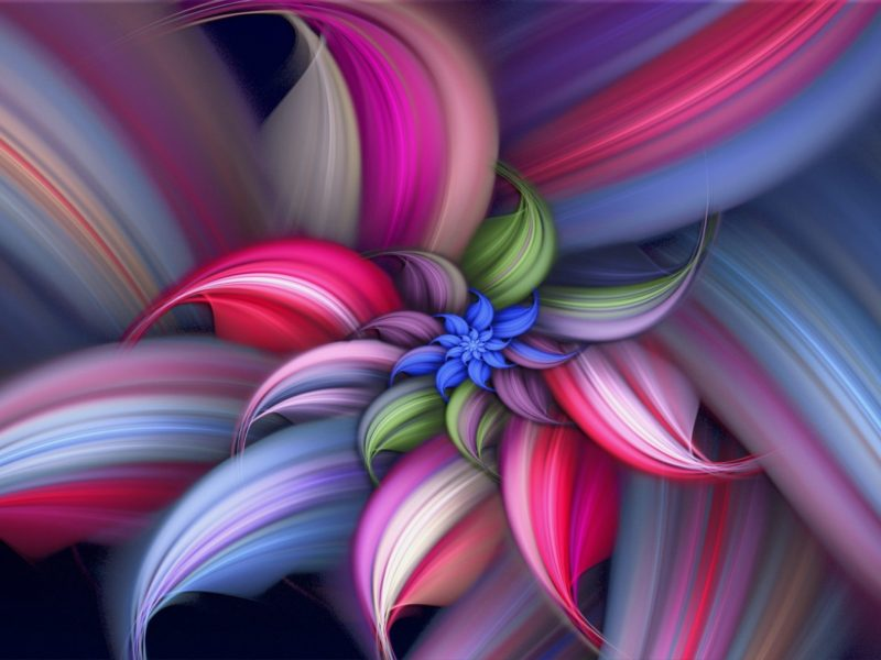 Abstract Flower Art Colorful