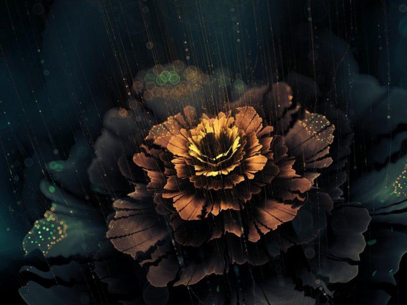 Abstract Rain Flowers Artwork Blossom