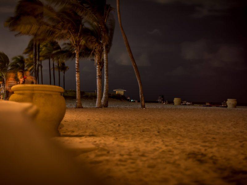 Ach South Florida Midnight Halloween