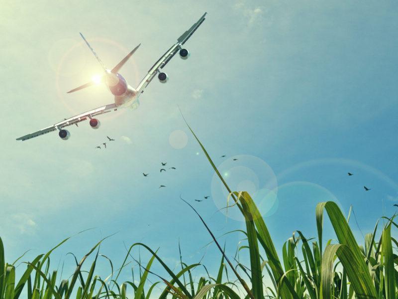 Aircraft Fields Sun Sky Wide