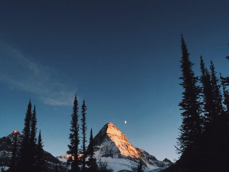Alpenglow On Mount Assiniboine Bc