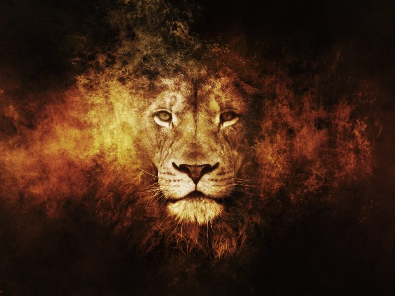 The Lion in The Chronicles of Narnia
