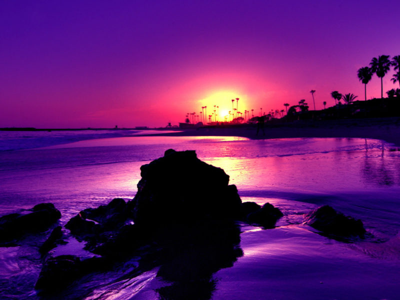 Amazing Purple Sunset Beach