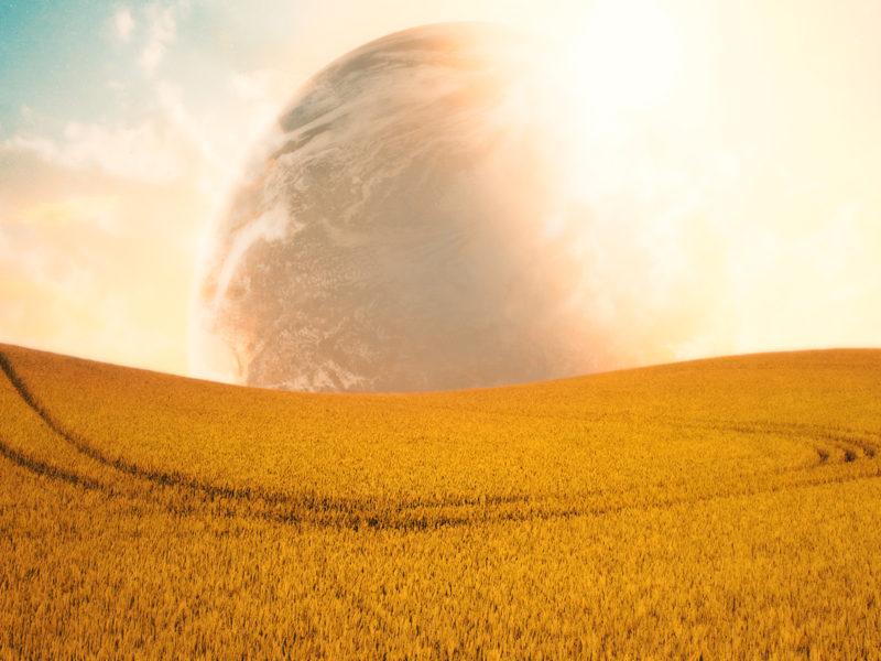 Campo Aberto Fields Planet Wide