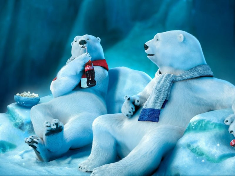 Coca Cola Bear Funny
