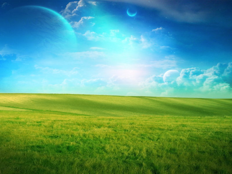 Dreamland Wide