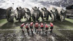 Funny Rugby Team Vs Rhinos Funny