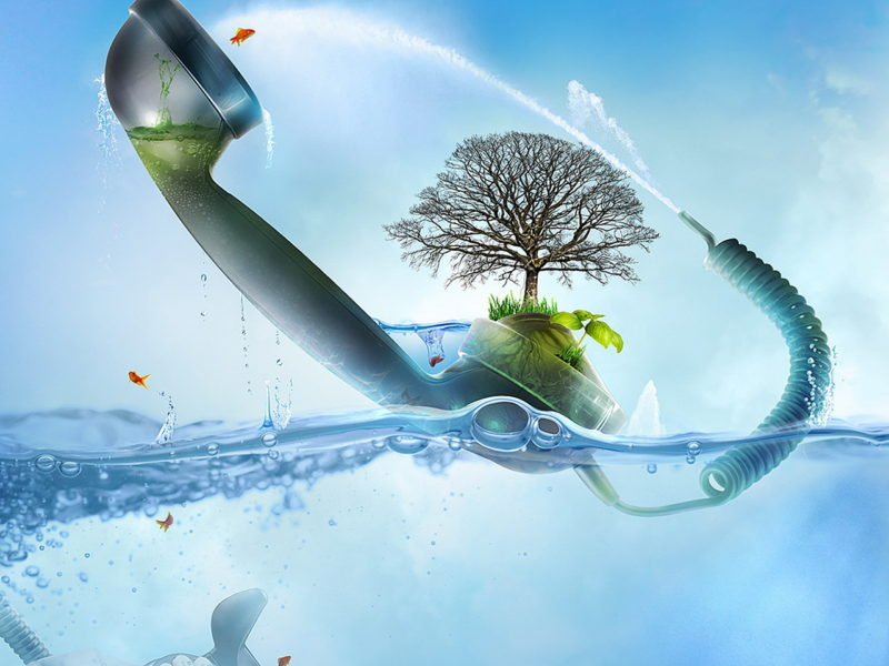 Nny Wallpapers The Tree In The Handset 093296