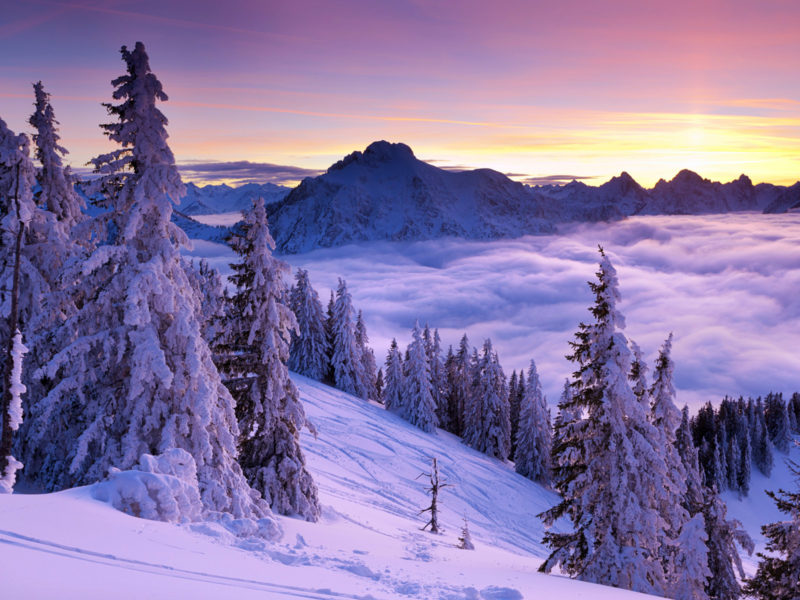 Purple Winter Sunset Wide