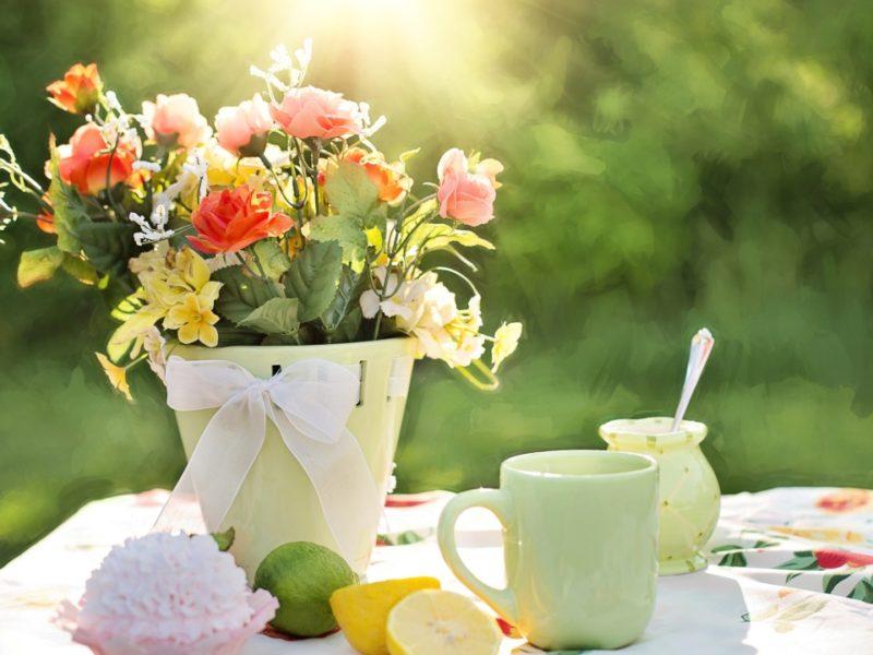 Summer Flowers Pot 1280×720