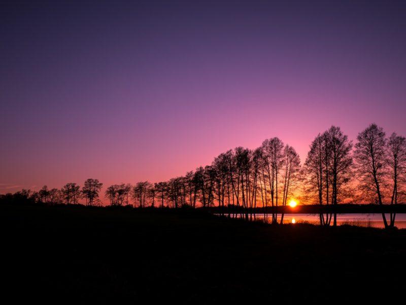 Sunset Silhouette 1600×900