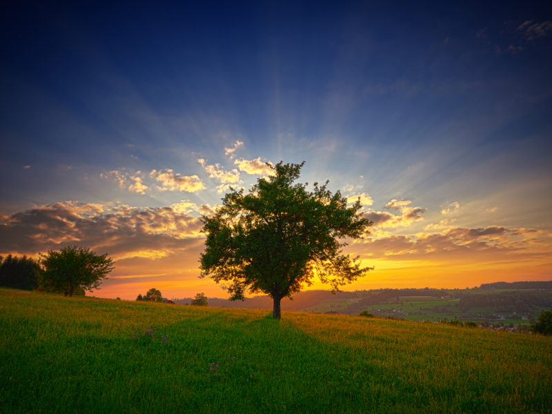 Swis Landscape Sunset Wide
