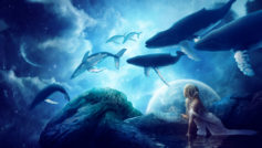 Whales Dream Wide