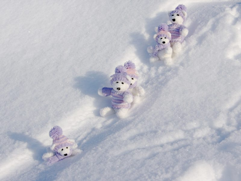 Cute Toy Bears on the snow