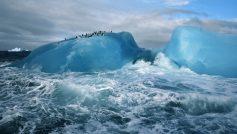 Antarctica Penguins Ice Ocean