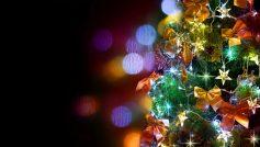 B A Festive Fir Tree