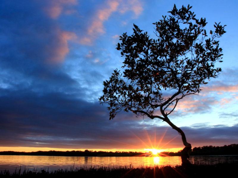 Sunset52