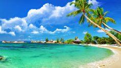 Beach Desktop Nature