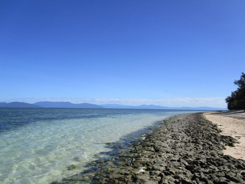 Beach Of Green Island Australia