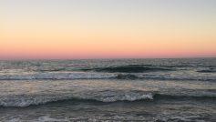 Beach State Park South Carolina Usa