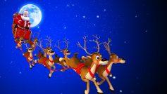 Holidays Celebrations 17
