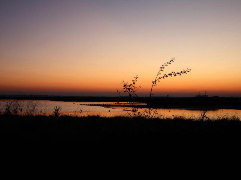 Sunset83