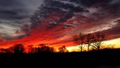 Sunset86