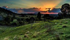 Sunset99